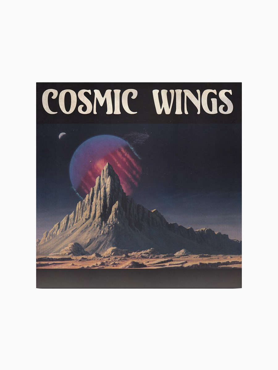 Cosmic Wings